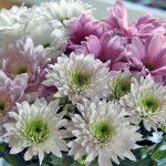 Fina blommor från Love med familj