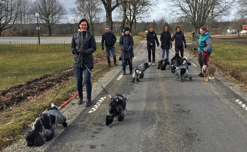 Promenadgänget - från vänster: Monica med Lottie & Rasmus, Bosse med Bosse,, Therese med Ludde, Emilia med Sigge, Nikki med Frans, Marie med Jonna & Linda med Molly & Eddie.