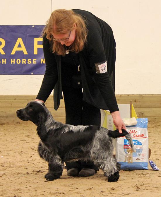STOLT & GLAD uppfödare med en underbar hund som skött sig exemplariskt.